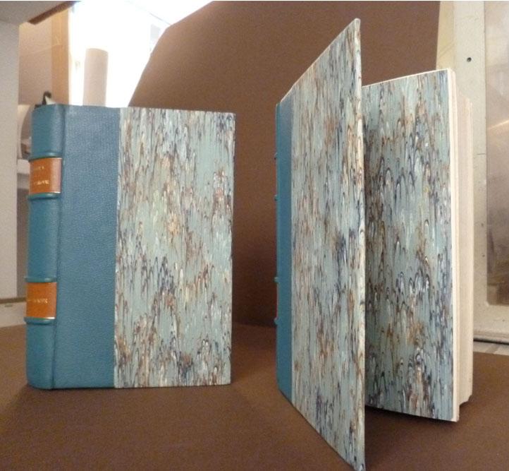 Livre bleu avant restauration